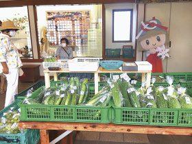 多賀町農林産物直売所(もんぜん市)